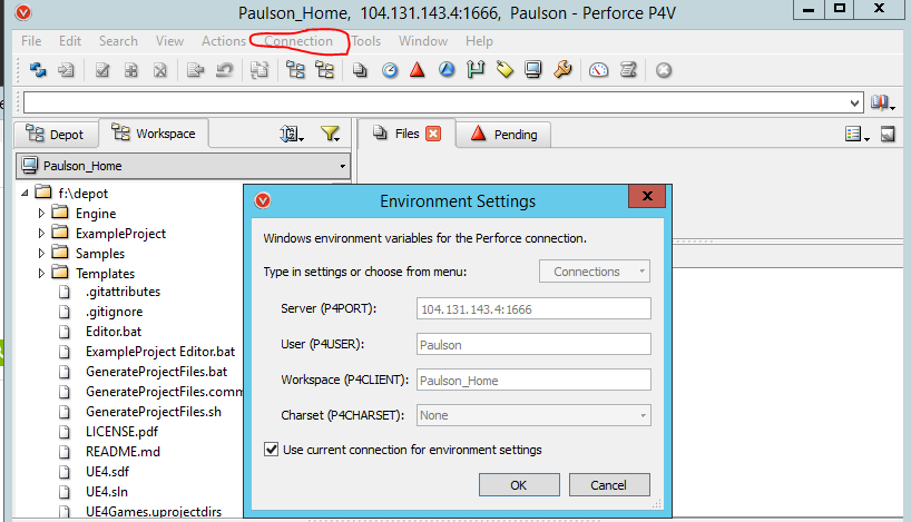 Perforce Environment Settings